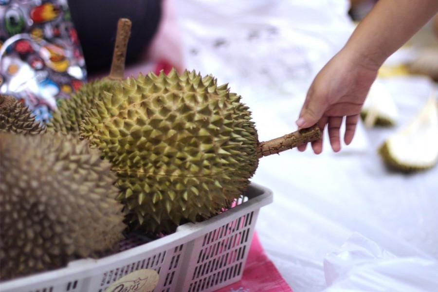 Durian Mobilisation 2014