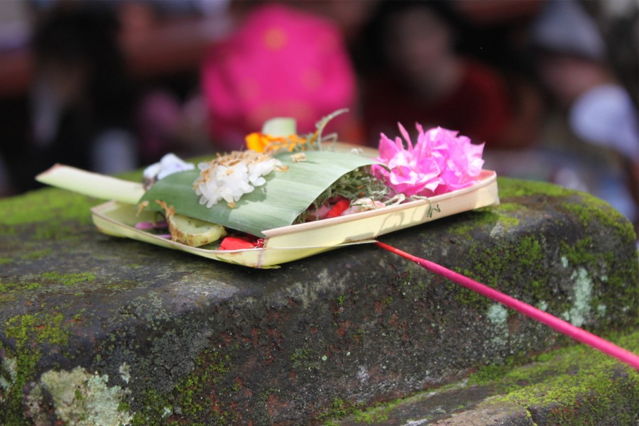 A day in Ubud with friends