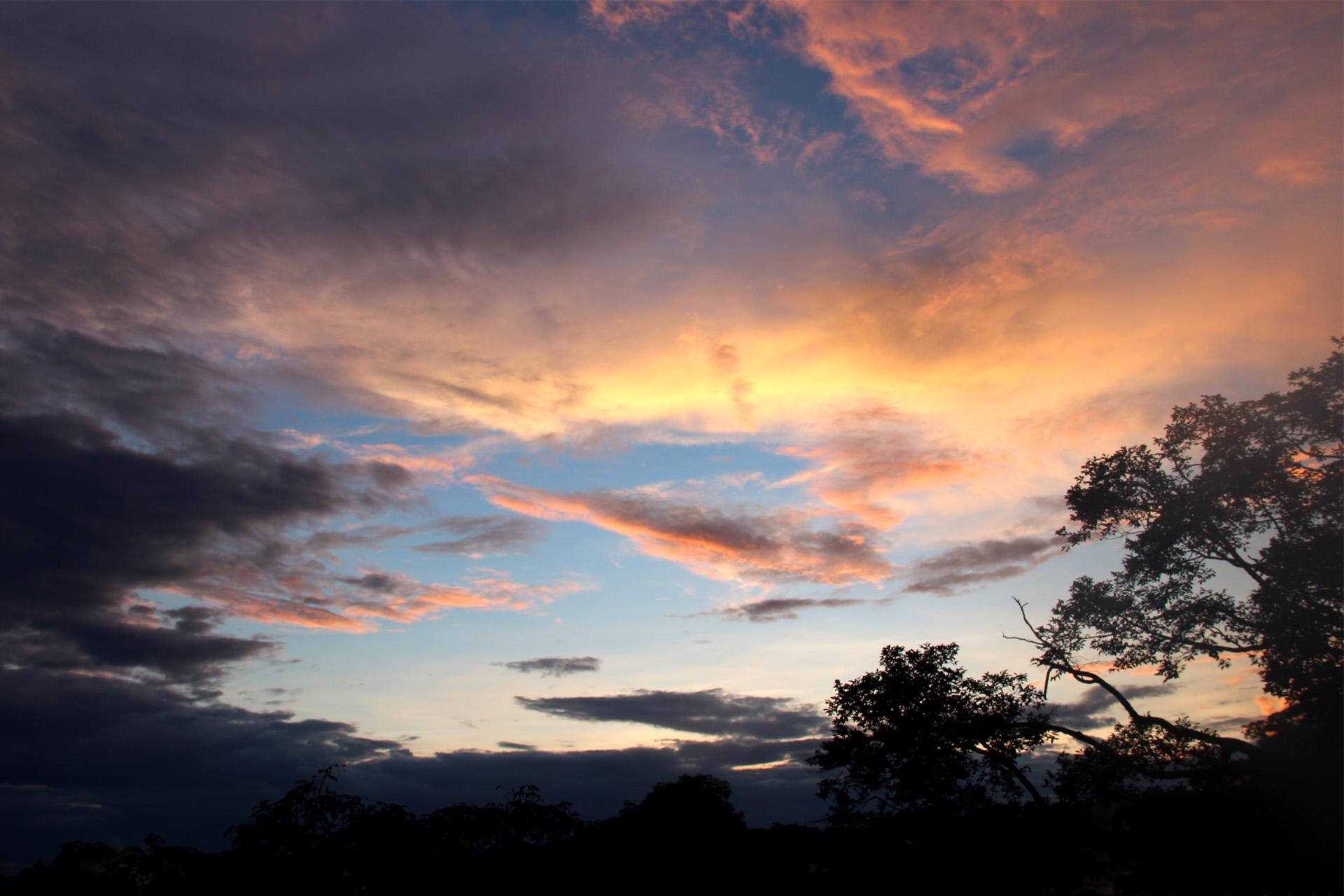 1657 - Brunei - Peering above the Rainforest