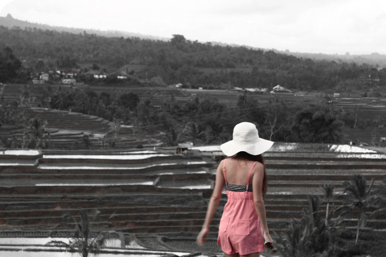 {Throwback Thursdays} Rice Fields in Bali in 2010