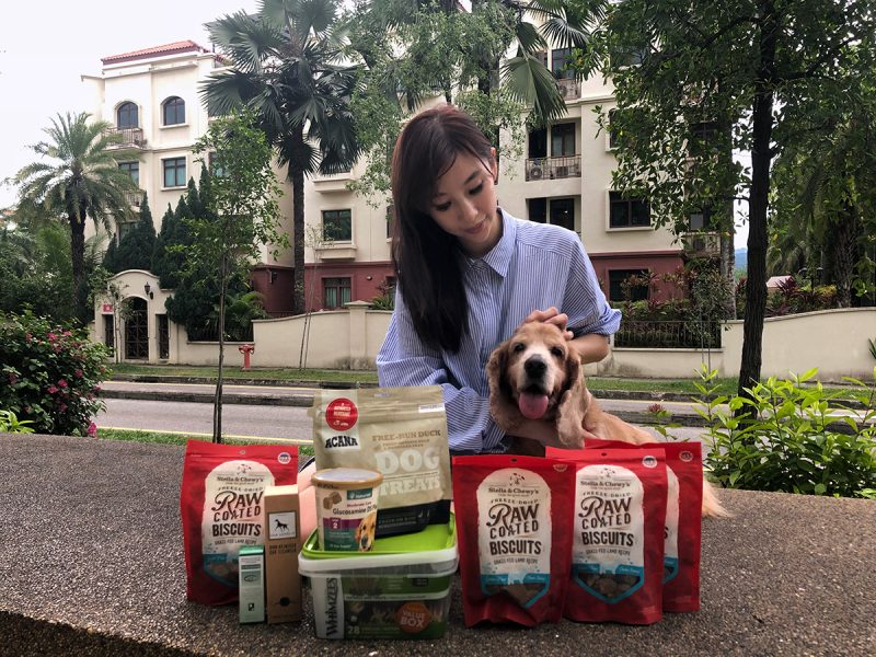 Kohepets Pet Supplies Delivery Services